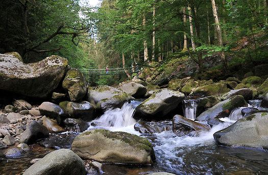 Wanderwege im Bayerischen Wald